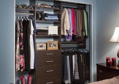 Modern Guest Reach In Closet